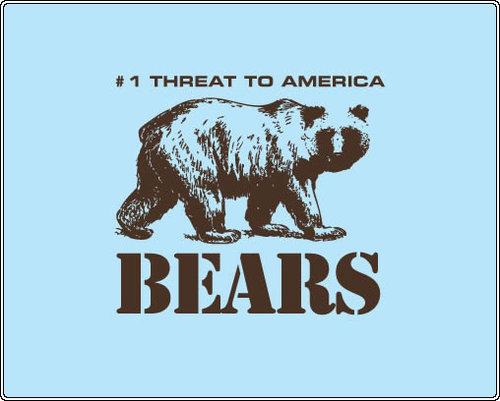 Bears_fullpic_1