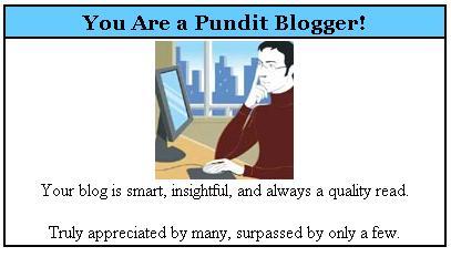 Pundit_blogger