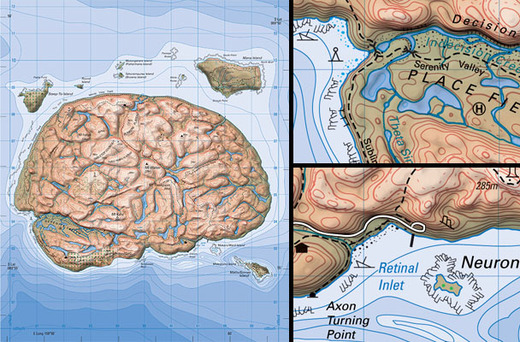 Brainlandmap