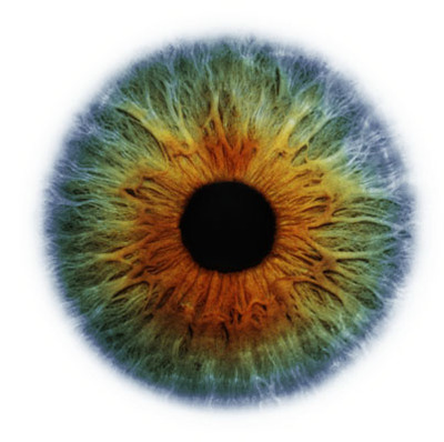 Eye_scapes_01