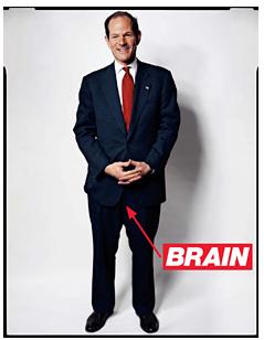 Spitzer_brain
