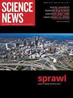 Does_sprawl_make_people_fat_1