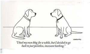Dog_blog_1