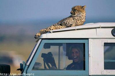 Leopard_woman