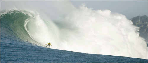 Surf5831